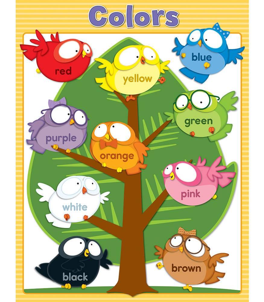 Local Teachers Supplies_c_1118 4 on 114122 Owl Pals Colors Chart